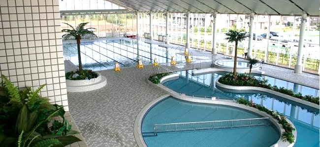 Outdoor Or Indoor, Or Even Roof Top Pool? Athletic Or Educational Pool, Or  For Amusement? Fantastic Design Or Durability? Or, Is Your Preference For  Budget ...